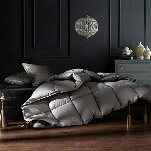 CHOU DAN ,Down duvet 95 white goose down duvet warm in winter thick quilt single and double 1.8m winter thick duvet quilt core-220x240 4000g_gray
