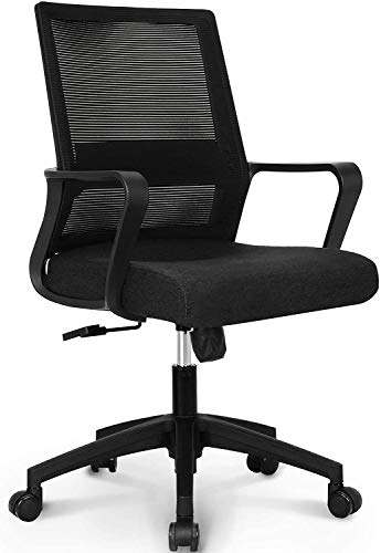 SuccessfulHome Ergonomic Office Chair, Office...
