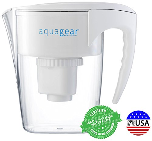 best water purifier pitcher