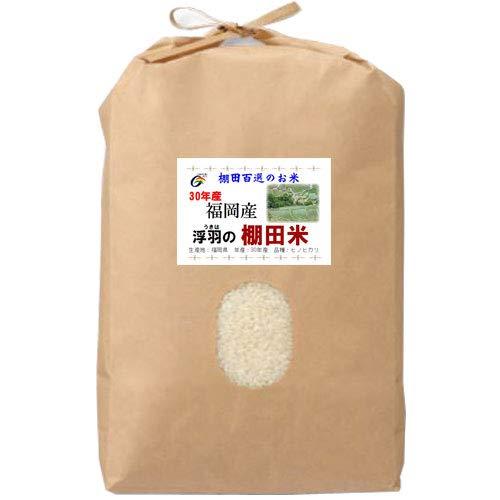 令和元年産 福岡産 JAにじ 棚田米 ヒノヒカリ 5kg (玄米のまま(5kg))