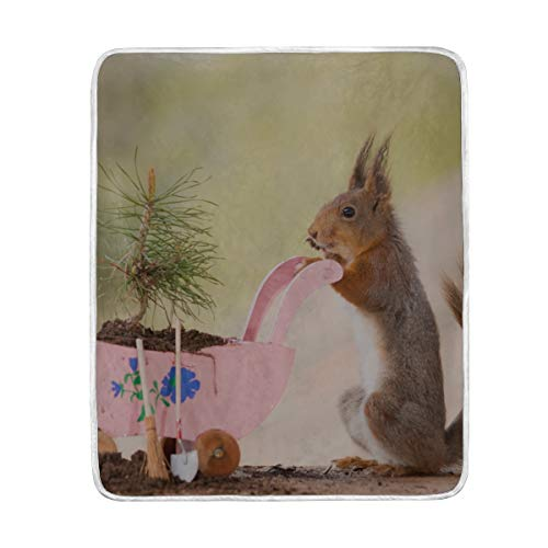 """HUCG Throw Blanket Red Squirrel Standing Wheelbarrow Young Pine Soft Blanket Warm Plush Blanket for Sofa Chair Bed Office Gift Best Friend Women Men 50""""x60"""" Throw Blanket for Kids"""