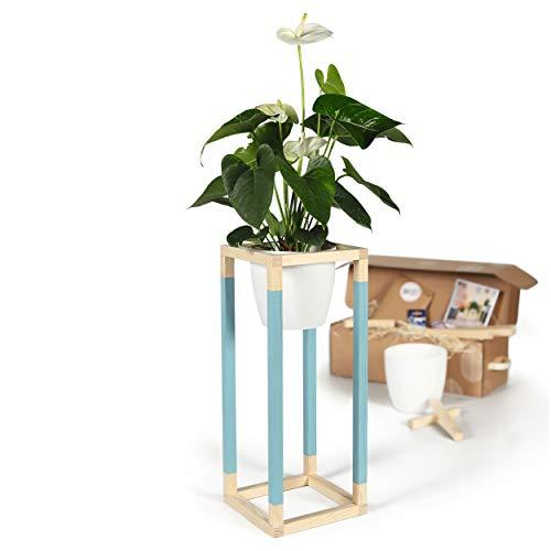 CREATE! by OBI DIY Pflanzständer, mittel | Dekorativer Pflanzenständer aus Holz zum Selberbauen (Hinweis: Farbe im Set Nicht enthalten)
