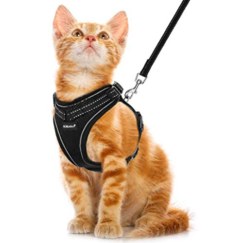 SCIROKKO Cat Harness and Leash Set - Reflective Adjustable Cat Harness for Outdoor Walking with Escape Proof Buckle, Soft Mesh Walking Jacket for Kitten, Puppies