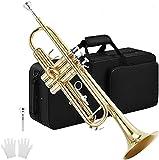Trompeta Nuevo Profesional TR210S BB Trumpet Black Nickel Gold Chapado Amarillo Latón Instrumentos BB Trumpete Popular Musical Silver
