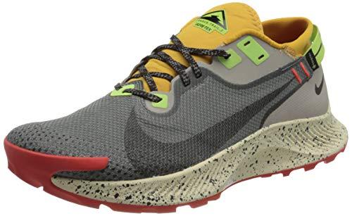 Nike Pegasus Trail 2 GTX, Zapatillas para Correr Hombre, Smoke Grey Black Bucktan College Grey Key Lime Chile Red, 40.5 EU