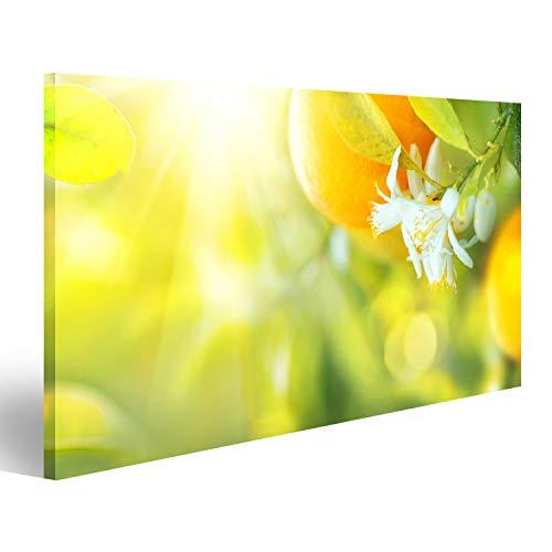 Bild Bilder auf Leinwand Blühender Orangen- oder Zitronenbaum. Gesunder Bio-Zitronen- oder Orangenanbau im sonnigen Obstgarten Wandbild, Poster, Leinwandbild QRN
