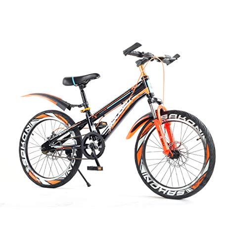 SJSF Y Bici De Montaña Bicicleta Infantil Niño Y Niña A Partir...