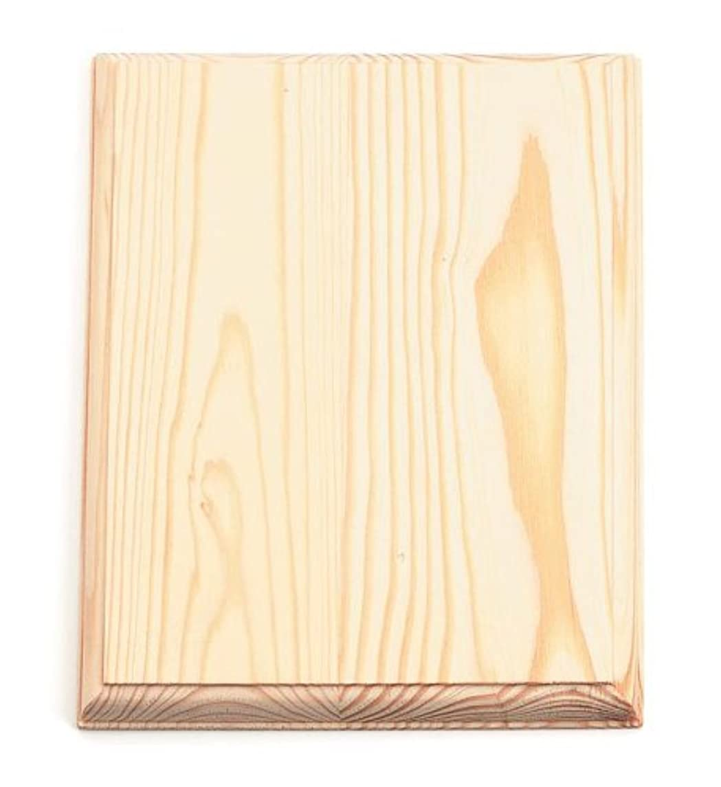 Darice 9176-29 Wood Rectangle Plaque