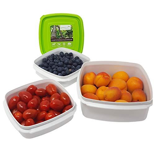 Greenline 3-er Set Frischhaltedosen Vegan Natürlicher Bio-Kunststoff aus Zuckerrohr 0,7 l + 1,25 l + 2,5 l Frischhalte-Boxen BPA-frei Mikrowellengeeignet, Spülmaschinenfest Gefrierdose bis - 40°C