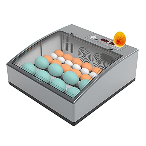 YAWEDA Incubadora Automática de 6-36 Huevos con Iluminación LED Pantalla Digital y Control Eficiente e Inteligente de Temperatura y Humedad Fácil Manipulación Rotación Automática (Size : 6 Eggs)
