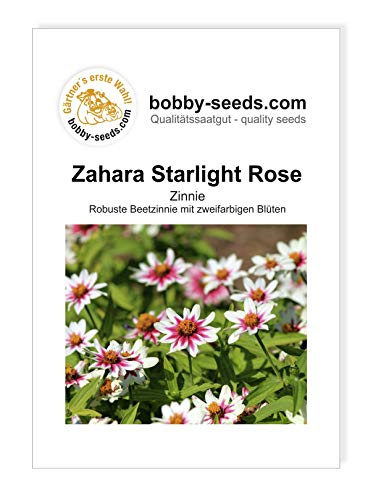 Bobby-Seeds Zinnien Samen Zinnie Zahara Starlight Rose Portion