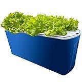 NBALL-TT Kit de Crecimiento hidropónico para Plantas Hierba Jardín Starter Set DIY Auto Riego Hidropónico Interior Herramientas con Cubo