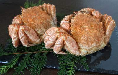 北海道産の毛蟹をボイル 毛ガニ 約500gx2尾 ボイル 冷凍 極上堅蟹 毛蟹 新物