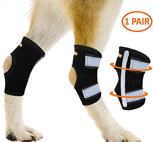 NeoAlly Super Supportive Dog Braces for Rear Hock...