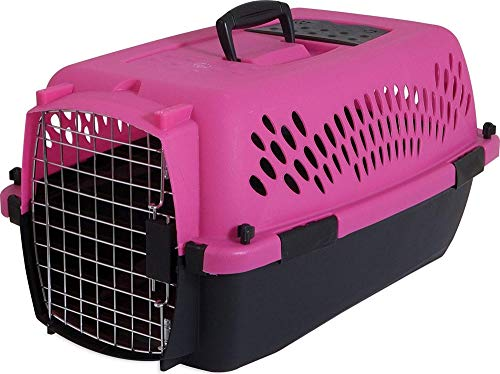 Petmate 21088 Pet Taxi Fashion, Dark Pink/Black, 23""