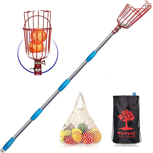 WATELE Fruit Picker Tool(8FT)-Includes Fruit Picker Pole with Basket telescoping, Tool Storage Bags and Fruit Bags,to Pick Apples, Oranges and Fruit Trees