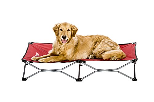 Carlson Pet Products Carlson Elevated Dog Bed,...