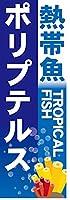 『60cm×180cm(ほつれ防止加工)』お店やイベントに! のぼり のぼり旗 熱帯魚 TROPICAL FISH ポリプテルス(青色)