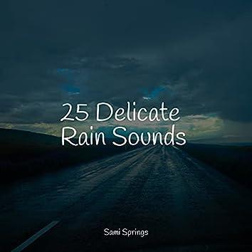 25 Delicate Rain Sounds