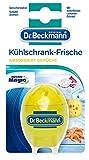 Dr. Beckmann Kühlschrank-Frische, 40 g
