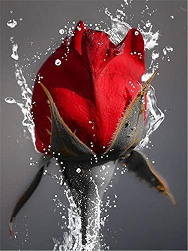 DIY 5D Diamante Pintura Taladro Completo Kit De Pintura De Diamante Para Adultos Arte Diamond Painting Rosas Para Decoración De Pared Hogar Regalo AD20817 Taladro Cuadrado 50x60cm
