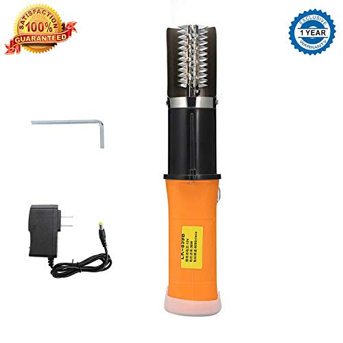 Viiwuu Electric Fish Scaler