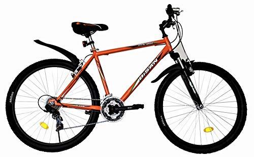 T 26 Zoll Kinder Jugend Mädchen Herren Jungen Damen MTB Fahrrad Mountainbike FEDERGABEL JUGENDFAHRRAD KINDERFAHRRAD Bike Rad 21 Gang 4200 ORANGE