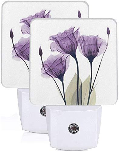 Paquete de 2 lámparas LED de luz nocturna con impresión de flores violetas con atardecer a amanecer Auto Motion Senor para leer cuarto de baño dormitorio guardería decoración, US Jack