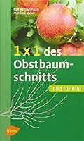 Heinzelmann, R: 1 x 1 des Obstbaumschnitts