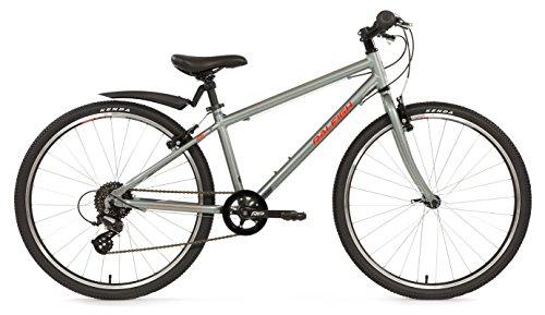 Raleigh Kinder-Fahrrad, Silber, 35,6 cm