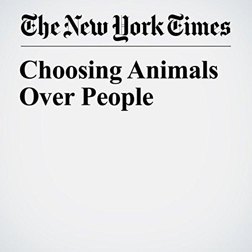 Choosing Animals Over People copertina