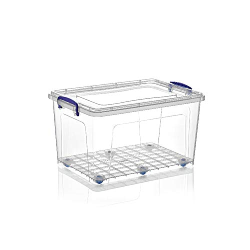 Superio Storage Container, 44 Qt, Clear with Blue Handles