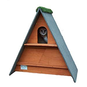 barn owl nest box (Golden Brown)
