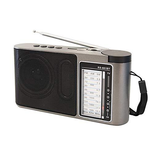 VLERHH Draagbare radio, draagbare multiband-wijzer-miniradio, USB-aansluiting, bluetooth-luidspreker, ingebouwde luidspreker, MP3-speler met TF-kaart voor ouderen en kinderen, 2 stuks