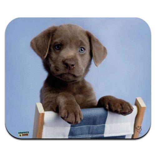 Muismat, Engelse Bulldog puppy hond slaapzak laag profiel dunne muismat 7,1 x 8,7 inch muismat, Gaming Mouse Pad 10 x 12 In(25 x 30cm) M-6
