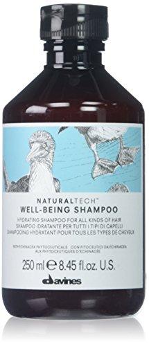 Davines Naturaltech Shampoing Well-Being 250ml