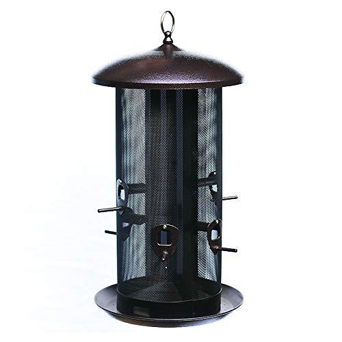 Nature's Rhythm Metal Hopper Bird Feeder, Two Chambers,10lbs Seed Capacity