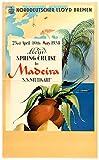 Póster de Portugal Madère Madeira de 50 x 70 cm, papel de 300 g, venta del archivo digital HD, posible, consulta (tienda: póster vintage.FR)
