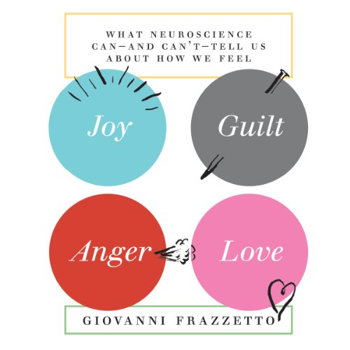 Joy, Guilt, Anger, Love audiobook cover art