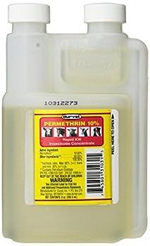 permethrin cream 5