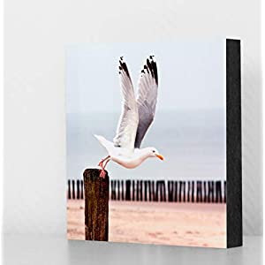 """Bild""""Möwe Erika"""" (farbig) 10x10cm oder 14x14cm, MDF, Geschenk, Deko, Strand, Meer, Nordsee"""