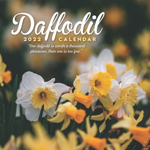 Daffodil 2022 Calendar: 12-month mini Calendar 2022 8.5 x 8.5 inches