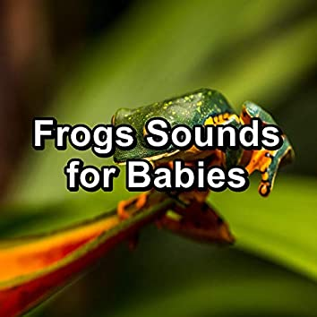 Frogs Sounds for Babies