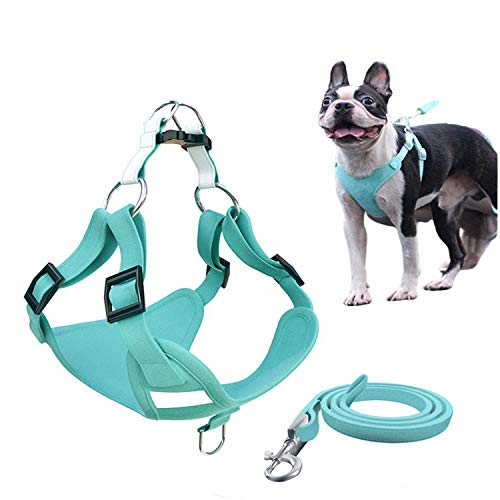 Xqpetlihai Step-in Air Dog Harness Reflective Dog Vest Harness with Leash Breathable and Adjustable Soft Padded Dog Vest with Easy Control Handle for Small to Large Dogs (Lake Blue S)
