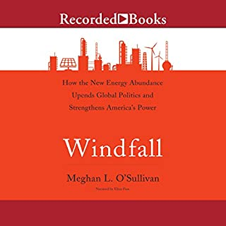 Windfall audiobook cover art