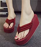Zapatillas Casa Chanclas Sandalias Fashion Casual Lady Wedge with Flip Flops Fashion Sandals Shoes-Rouge_38