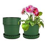 Mengxin 8 Pacchi 16CM Vaso per Piante in Plastica Vasi da Fiori con Piattino Piccoli Vasetti per Piantine Verde per Interni Esterni Aloe, Erba, Orchidea (Piccolo)