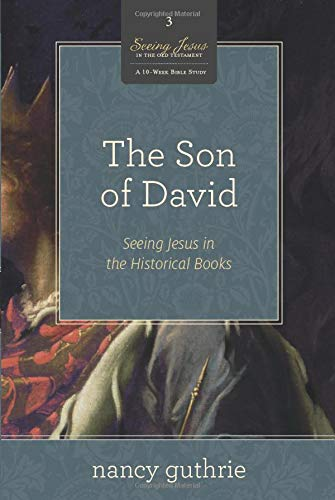 The Son of David (A 10-week Bible Study): Seeing Jesus in the Historical Books (Volume 3)