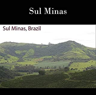 33 lbs BRAZIL SUL MINAS NATURAL PROCESS SPECIALTY AAA GREEN COFFEE BEANS