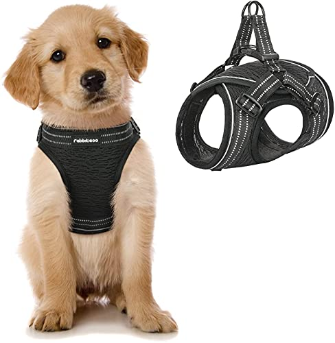 rabbitgoo Small Dog Harness, Mesh Dog Vest Harness with Double D-Rings, Reflective Breathable Soft Pet Harness with Adjustable Hook & Loop and Fast-Release Buckle for Small and Medium Dogs